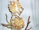 susinova_dekorace_1